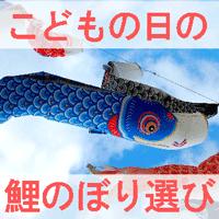 こどもの日の鯉のぼり選びの画像