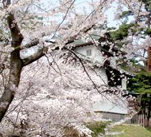 弘前公園200