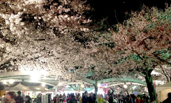 お祭り広場2
