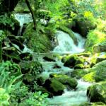 王滝渓谷200