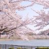 高松公園200