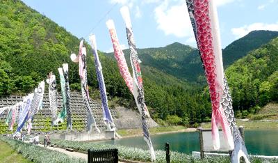 芳那(はな)の水晶湖 鯉のぼり