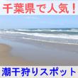 千葉県で人気のおすすめ潮干狩りスポットを紹介する画像