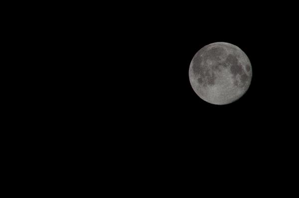 満月の写真