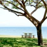 愛知県田原市【白谷海水浴場】で海水浴とビーチバレー!公園でも遊ぼう