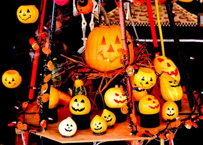 かぼちゃ400