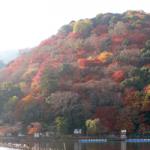 京都の紅葉の見ごろ時期は?おすすめスポットは嵐山!ライトアップも人気!