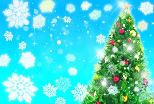クリスマスツリーのレンタル