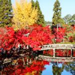 【京都の紅葉狩り】南禅寺と永観堂と銀閣寺なら新大阪から1時間!