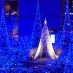 【室内イルミネーション】クリスマスの穴場スポットまとめ「関東編」
