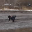 能取湖の潮干狩り