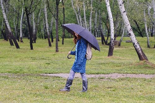 雨の中で黒い傘をさす青い服の女性の画像