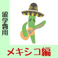 メキシコ留学の費用