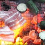 網の上でお肉と野菜がおいしそうに焼かれているバーベキューの画像