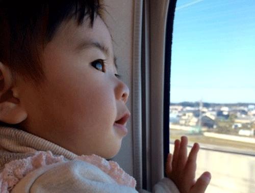 赤ちゃんが新幹線で嬉しそうに外を眺める画像
