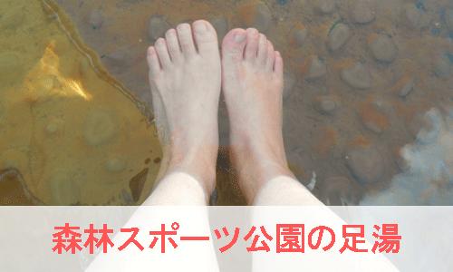 森林スポーツ公園の足湯のイメージ画像