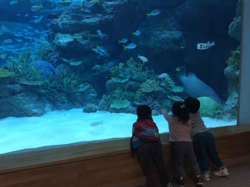 1名古屋港水族館
